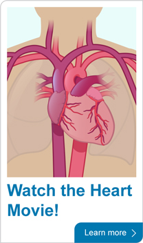 Watch the heart movie!