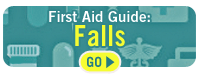 First Aid Guide Falls Go