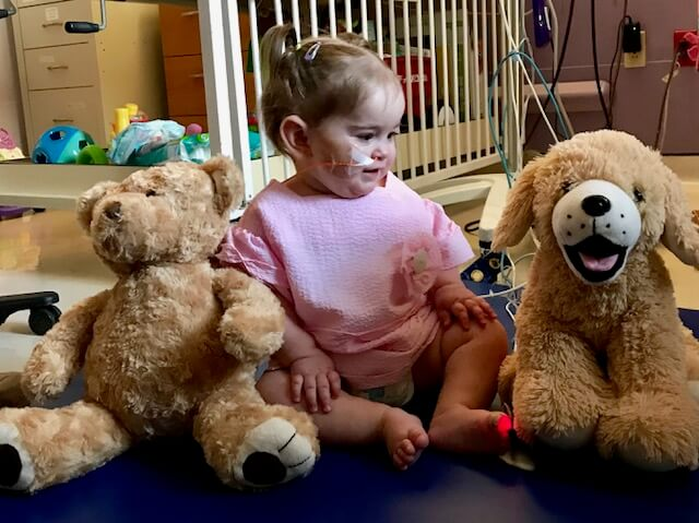 Sound Of Girl S Heartbeat Put Into Stuffed Animals For Her Family